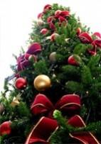 Beaux livres MPF sur le patrimoine : pensez à vos cadeaux de Noël !