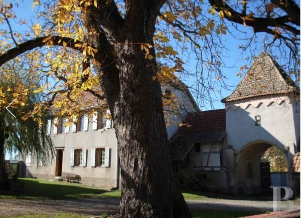 Nambsheim