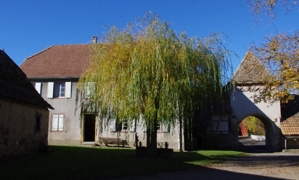 NAMBSHEIM 16 rue du Chateau (96)