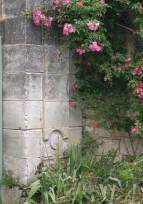 Activités de MPF16 en Juin : jardin, journée patrimoine de pays, atelier peinture