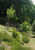 "Jardin de ""Bardot"" - Visite guidée"
